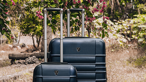 Solier STL838 luggage back on sale!